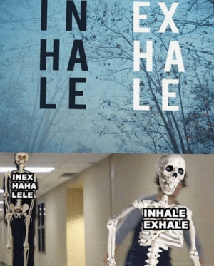 Inhale, Inhale Exhale, and Inex: IN EX  НА КА  HA  LE LE  INEX  НАНА  LELE  INHALE  EXHALE hahalele