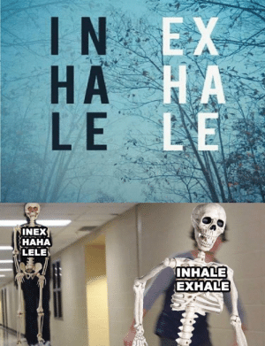 First, This, and This Is: IN EX  НА НА  HA  LE LE  manBjark  INHALE  EXHALE This is my first spooktober