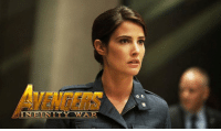 Memes, Avengers, and Http: IN FI  ITY WAR Maria Hill has been confirmed to appear in AVENGERS: INFINITY WAR!  http://tinyurl.com/z8nwddg  (Brian)