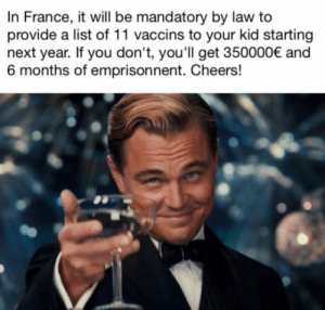 Take that anti-vaccin scum!: In France, it will be mandatory by law to  provide a list of 11 vaccins to your kid starting  next year. If you don't, you'll get 350000 and  6 months of emprisonnent. Cheers! Take that anti-vaccin scum!