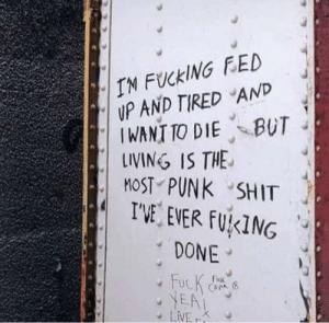 Good motivation to live via /r/wholesomememes https://ift.tt/2QkcEM2: IN FUCKING FED  UP AND TIRED AND  IWANT TO DIE BUT  LINING IS THE  MOST PUNK SHIT  I'VE EVER FUKING  DONE  FucK  YEA  LiVE  FroR  CAVA (8  K Good motivation to live via /r/wholesomememes https://ift.tt/2QkcEM2