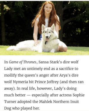 Ms. Turner being a wholesome adoptee via /r/wholesomememes http://bit.ly/2Vtd6vs: In Game of Thrones, Sansa Stark's dire wolf  Lady met an untimely end as a sacrifice to  mollify the queen's anger after Arya's dire  wolf Nymeria bit Prince Joffrey (and then ran  away). In real life, however, Lady's doing  much better  especially after actress Sophie  Turner adopted the Mahlek Northern Inuit  Dog who played her. Ms. Turner being a wholesome adoptee via /r/wholesomememes http://bit.ly/2Vtd6vs