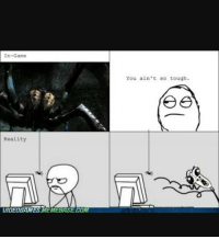spiders funny memes gaming gamingmemes videogames girlgamers skyrim console pc instalike instafollow f4f: In-Game  Reality  VIDEOGAMES MEMEBASECOM  You ain't so tough. spiders funny memes gaming gamingmemes videogames girlgamers skyrim console pc instalike instafollow f4f