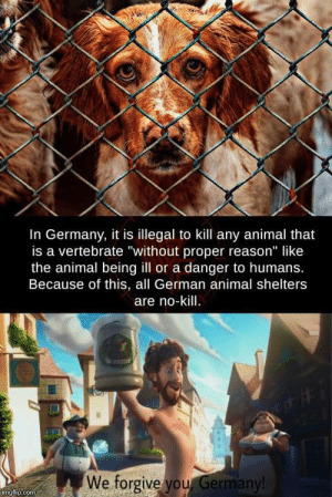 "Wholesome Germany: In Germany, it is illegal to kill any animal that  is a vertebrate ""without proper reason"" like  the animal being ill or a danger to humans.  Because of this, all German animal shelters  are no-kill.  We forgive you Germany!  imgflip.com Wholesome Germany"