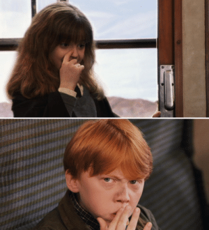 """Harry Potter, Hermione, and Cross: In Harry Potter and the Sorcerer's Stone (2001), Hermione points out that Ron has """"dirt on [his] nose"""". Despite not being discussed till the second movie, this 'dirt' is residual soot from his Floo-powder trip to King's Cross station."""