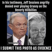 Memes, 🤖, and Photos: In his testimony, Jeff Sessions angriliy  denied ever playing Granny on the  Beverly Hillbillies  TheSnarkyRundit  I SUBMIT THIS PHOTO AS EVIDENCE I say, Jeff Sessions is a liar! < Snarky Pundit> LIKE and Follow for more!