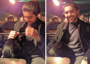 Head, Istanbul, and Her: In Istanbul, a random cat can hop on your lap and put her head inside your coat