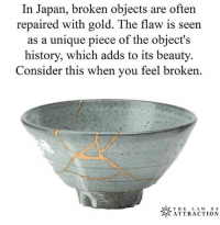 Memes, History, and Japan: In Japan, broken objects are often  repaired with gold. The flaw is seen  as a unique piece of the object's  history, which adds to its beauty.  Consider this when you feel broken.  ※ATTRACTION The harshest and most atrocious moments of our lives are verily the ones that shape us the most, that mold our character with the greatest efficacy. So why do we not share this mentality? This romantizising of pain and suffering on the account of solely growth. For what is growth, really? Did you know that more or less every singular way in which we respond and interact with occurrences in our passing environment are programmable and reprogrammable both? Follow @lawofattraction0 for more amazing memes! 1ove 🙏💓 awakespiritual cherish pain strive for growth path of ascension fill the cracks with gold