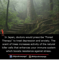 "Memes, Anxiety, and Depression: In Japan, doctors would prescribe ""Forest  Therapy"" to treat depression and anxiety. The  scent of trees increases activity of the natural  killer cells that enhances your immune system  which boosts resistance against stress  /didyouknowpagel @didyouknowpage"