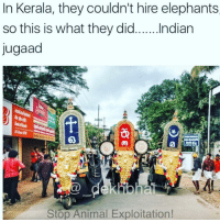 Amazing message via this funny meme 👌🏻 They dont speak our language it doesnt mean we keep exploiting them. Instead we should take measures to protect our Adverse Wildlife! StopHurting India crueltyfree nation LiveAndletLive LoveThem TheyAreBeautiful Kerela SouthIndia . Cc : @ommy_007 . Pc : @rahuldid: In Kerala, they couldn't hire elephants  so this is what they did  Indian  Jugaad  Stop Animal Exploitation! Amazing message via this funny meme 👌🏻 They dont speak our language it doesnt mean we keep exploiting them. Instead we should take measures to protect our Adverse Wildlife! StopHurting India crueltyfree nation LiveAndletLive LoveThem TheyAreBeautiful Kerela SouthIndia . Cc : @ommy_007 . Pc : @rahuldid