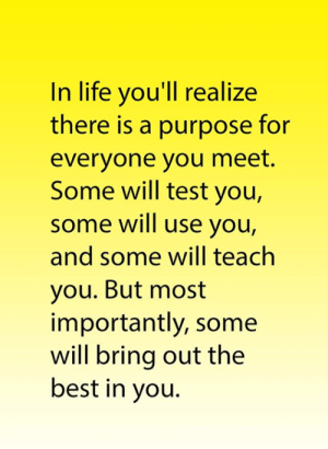 But Most Importantly: In life you'll realize  there is a purpose for  everyone you meet.  Some will test you,  some will use you,  and some will teach  you. But most  importantly, some  will bring out the  best in you.