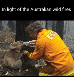 A positive moment of the Australian wild fires: In light of the Australian wild fires  CFA A positive moment of the Australian wild fires