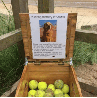 At a beach in Northumberland, England, you can borrow, take or give a tennis ball for doggos to play with on the beach. Thank you Charlie.: In loving memory of Charlie  Please help yourself to a tennis ball  for your dog to enjoy You may also wish  to pop it back in the box afterwards  for another pooch to enjoy. If you wish  to keep it then thats fine  Remember to live each moment just  tike  with unconditional  and  ness At a beach in Northumberland, England, you can borrow, take or give a tennis ball for doggos to play with on the beach. Thank you Charlie.