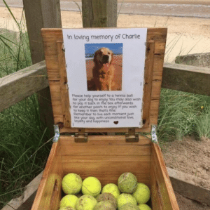 At a beach in Northumberland, England, you can borrow, take or give a tennis ball for doggos to play with on the beach. Thank you Charlie.: In loving memory of Charlie  Please help yourself to a tennis ball  for your dog to enjoy You may also wish  to pop it back in the box afterwards  I for another pooch to enjoy If you wish  to keep it then thats fine  Remember to live each moment just  with unconditional  loyalty and happiness At a beach in Northumberland, England, you can borrow, take or give a tennis ball for doggos to play with on the beach. Thank you Charlie.