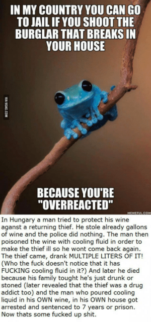 """Drunk, Family, and Fucking: IN MY COUNTRY YOU CAN GO  TO JAIL IF YOU SHOOT THE  BURGLAR THAT BREAKS IN  YOUR HOUSE  BECAUSE YOU'RE  """"OVERREACTED""""  HEMEFUL.COM  In Hungary a man tried to protect his wine  aganst a returning thief. He stole already gallons  of wine and the police did nothing. The man then  poisoned the wine with cooling fluid in order to  make the thief ill so he wont come back again.  The thief came, drank MULTIPLE LITERS OF IT!  (Who the fuck doesn't notice that it has  FUCKING cooling fluid in it?) And later he died  because his family tought he's just drunk or  stoned (later revealed that the thief was a drug  addict too) and the man who poured cooling  liquid in his OWN wine, in his OWN house got  arrested and sentenced to 7 years or prison.  Now thats some fucked up shit. To the serbian guys, our law is stupid as shit too. From Hungary"""