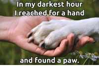<3: In my darkest hour  I reached for  a hand  and Found a Daw./ <3