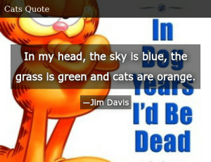 the sky is blue In my head the grass is green and cats are orange. Jim Davis