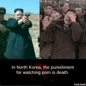 Facts Book: In North Korea, the punishment  for watching porn is death.  Facts book