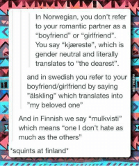 """Memes, Norwegian, and Girlfriend: In Norwegian, you don't refer  to your romantic partner as a  """"boyfriend"""" or """"girlfriend"""".  You say """"kjaæreste"""", which  You say """"kj reste"""", which is  is  gender neutral and literally  translates to """"the dearest""""  and in swedish you refer to your  """"älskling"""" which translates into  boyfriend/girlfriend by saying  my beloved one  And in Finnish we say """"mulkvisti""""  which means """"one I don't hate as  much as the others""""  squints at finland*"""