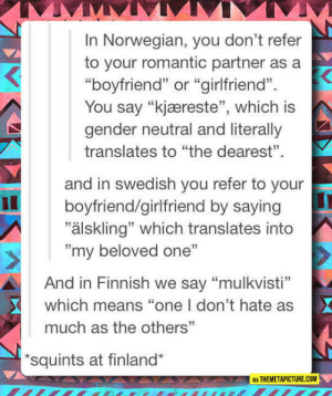 """Tumblr, Blog, and How To: In Norwegian, you don't refer  to your romantic partner as a  """"boyfriend"""" or """"girlfriend"""".  You say """"kjæreste"""", which is  gender neutral and literally  translates to """"the dearest"""".  and in swedish you refer to your  """"älskling"""" which translates into  boyfriend/girlfriend by saying  """"my beloved one""""  And in Finnish we say """"mulkvisti""""  which means """"one I don't hate as  much as the others""""  squints at finland*  VIA THEMETAPICTURE.COM srsfunny:How To Properly Refer To Your Romantic Partner"""