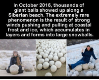 https://t.co/32INjdS6n6: In October 2016, thousands of  giant balls showed up along a  Siberian beach. The extremely rare  phenomenon is the result of strong  winds pushing and pulling at coastal  frost and ice, which accumulates in  layers and forms into large snowballs. https://t.co/32INjdS6n6