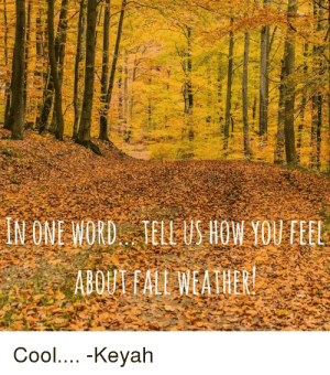 19 Funny Fall Weather Meme That Make You Laugh | MemesBoy: IN ONE WORD TELL US HOW YOU EEEL  Cool.... -Keyah 19 Funny Fall Weather Meme That Make You Laugh | MemesBoy