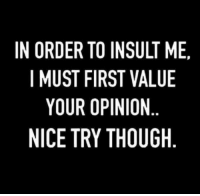 To Insult: IN ORDER TO INSULT ME.  I MUST FIRST VALUE  YOUR OPINION  NICE TRY THOUGH