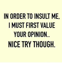 insult: IN ORDER TO INSULT ME,  I MUST FIRST VALUE  YOUR OPINION  NICE TRY THOUGH