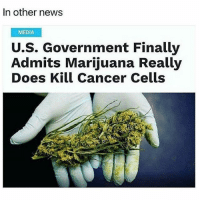 Bout time 👍 @420stocks: In other news  MEDIA  U.S. Government Finally  Admits Marijuana Really  Does Kill Cancer Cells Bout time 👍 @420stocks