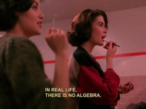 algebra: IN REAL LIFE,  THERE IS NO ALGEBRA.