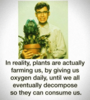 Oxygen, Farming, and Reality: In reality, plants are actually  farming us, by giving us  oxygen daily, until we all  eventually decompose  so they can consume us. Tasty humans