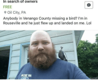 Lol, Free, and Search: In search of owners  FREE  Oil City, PA  Anybody in Venango County missing a bird? I'm in  Rouseville and he just flew up and landed on me. Lol Lumberman finds birb