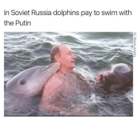 @tank.sinatra is a must follow if you like original memes that actually make you laugh out loud: In Soviet Russia dolphins pay to swim with  the Putin @tank.sinatra is a must follow if you like original memes that actually make you laugh out loud