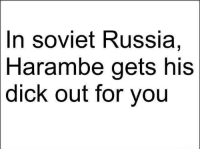 Facts: In soviet Russia,  Harambe gets his  dick out for you Facts