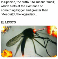 ito: In Spanish, the suffix -ito means 'small'  which hints at the existence of  something bigger and greater than  'Mosquito', the legendary...  EL MOSCO