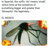 God, Spanish, and Mosquito: In Spanish, the suffix -ito' means 'small'  which hints at the existence of  something bigger and greater than  'Mosquito', the legendary...  EL MOSCO Is this god?