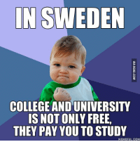 Studying Memes: IN SWEDEN  COLLEGE AND UNIVERSITY  IS NOT ONLY FREE,  THEY PAY YOU TO STUDY  MEMEFUL COM