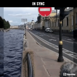 Memes, Videos, and Amazing: IN SYNC  S Stumbler RT @StumblerAutos: For more amazing autos videos follow @StumblerAutos or visit https://t.co/PZgT8B7k5C https://t.co/wSMhxyUOxH
