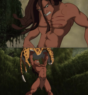 In Tarzan1999 Tarzan Gets A Scratch Mark From Sabor On The Right Of His Chest During Their Fight His Scratch Mark Somehow Disappeared After He Defeated Sabor Tarzan Meme On Me Me
