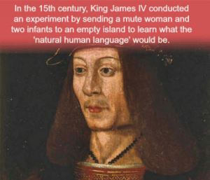 Club, Funny, and Tumblr: In the 15th century, King James IV conducted  an experiment by sending a mute woman and  two infants to an empty island to learn what the  natural human language' would be. laughoutloud-club:  *Hits blunt* Guys, I've got an other funny idea