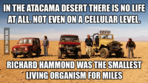 The smallest living organism in the desert (Top gear humor): IN THE ATACAMA DESERT THERE IS NO LIFE  RICHARD HAMMOND WAS THE SMALLEST  LIVING ORGANISM FOR MILES The smallest living organism in the desert (Top gear humor)