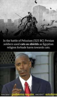 Cats, Soldiers, and Persian: In the battle of Pelusium (525 BC) Persian  soldiers used cats as shields as Egyptian  religion forbade harm towards cats.  ANCIENT problems require ANCIENT solutions Torreznos contra el terrorismo islámico.