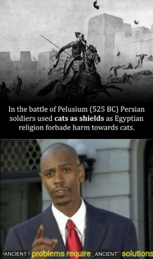 Egyptian: In the battle of Pelusium (525 BC) Persian  soldiers used cats as shields as Egyptian  religion forbade harm towards cats.  ANCIENT problems require ANCIENT Solutions