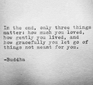 Buddha, How, and Three: In the end, only three things  matter how much y ou loved,  how gently you lived, and  how gracefully you let go of  things not meant for you.  -Buddha