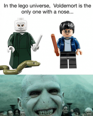 "Gif, Lego, and Tumblr: In the lego universe, Voldemort is the  only one with a nose... <figure class=""tmblr-full"" data-orig-height=""404"" data-orig-width=""347""><img src=""https://66.media.tumblr.com/79288ea0b718fb6a2eb1d67138f7cf7f/tumblr_inline_pnyojzIhCt1qhy6fn_540.gif"" data-orig-height=""404"" data-orig-width=""347""/></figure>"