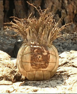 In the movie Cast Away, the audience never hears Wilson the volleyball speak. This is due to the fact that the movie was released with part of the audio missing - specifically, all of Wilson's lines. This hampers what could have been an Oscar-worthy performance by the iconic volleyball.: In the movie Cast Away, the audience never hears Wilson the volleyball speak. This is due to the fact that the movie was released with part of the audio missing - specifically, all of Wilson's lines. This hampers what could have been an Oscar-worthy performance by the iconic volleyball.
