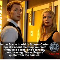 """America, Captain America: Civil War, and Memes: In the Scene in which Sharon Carter  Speaks about planting yourself  firmly like a tree, she's directly  WSNICOMICF  """"Steve Fact: 345  quote from the comics. - Captain America Civil War, truly is one of my favorite marvel movies. Just waiting to see if Homecoming will win it's spot. • • -QOTD?!: What's our favorite marvel movie?!"""