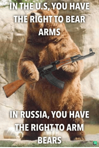 IN THE U.S, YOU HAVE  THE RIGHT TO BEAR  ARMS  IN RUSSIA, YOU HAVE  THE RIGHTTO ARM  BEARS