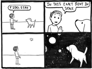 Pint, Fido, and Stay: IN THIS ExXACT PINT IN  FIDO, STAYSPACE Fido, Stay