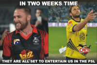 Many big stars are all set to entertain us. Are you ready to witness them?: IN TWO WEEKS TIME  THEY ARE ALL SET TO ENTERTAIN US IN THE PSL Many big stars are all set to entertain us. Are you ready to witness them?